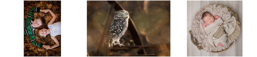 Award winning wildlife and landscape photographer, West yorkshire award winning photography