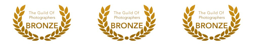 Award winning photographs, Bronze award photography, Guild of photographers
