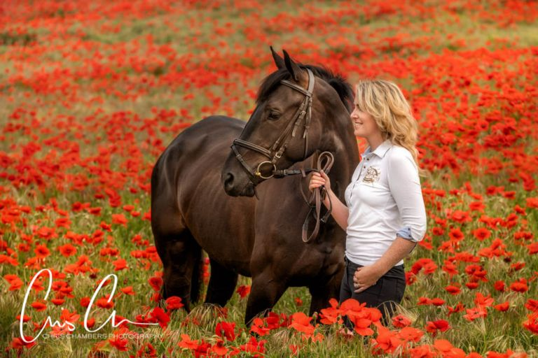 Yorkshire Equine photography. Horse portrait photographs. Portrait photography West Yorkshire