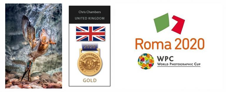 gold medal winner world photographic cup